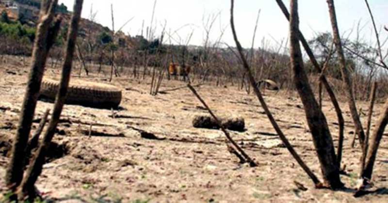 16966-2-5-millones-de-mexicanos-en-riesgo-de-hambruna-por-sequ-a-u