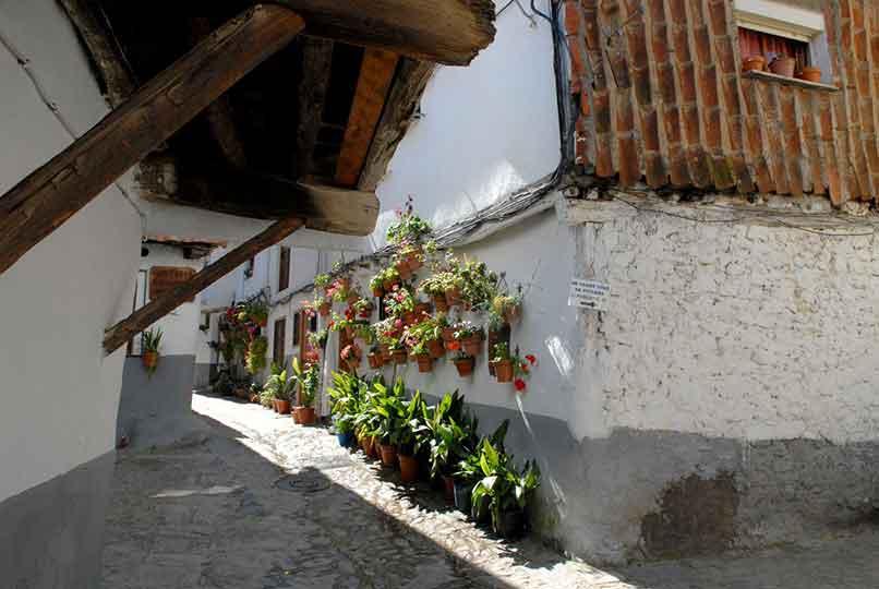 calle_tipica_hervas