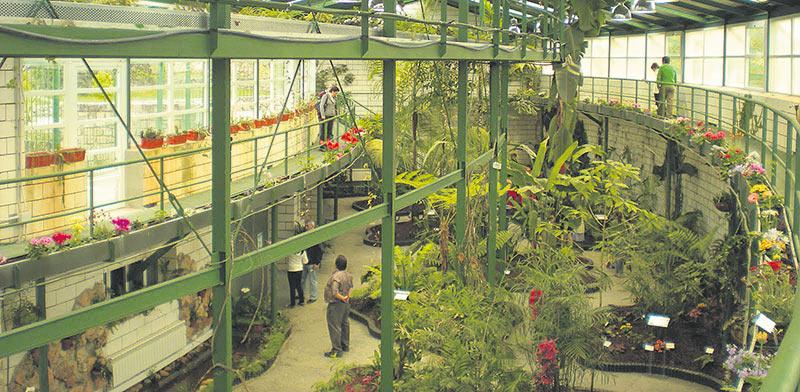 Cáceres inaugura el lunes un jardín en el Parque del Príncipe en homenaje a las víctimas del COVID-19