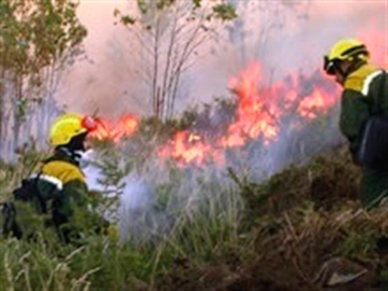 Un incendio en Cilleros calcina 85 hectáreas