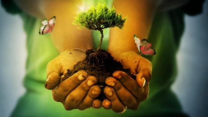 Nos estamos cargando el planeta. Emilia Guijarro. Greta Thunberg