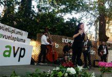 Lengua de Signos Premios Avuelapluma. Accesibilidad