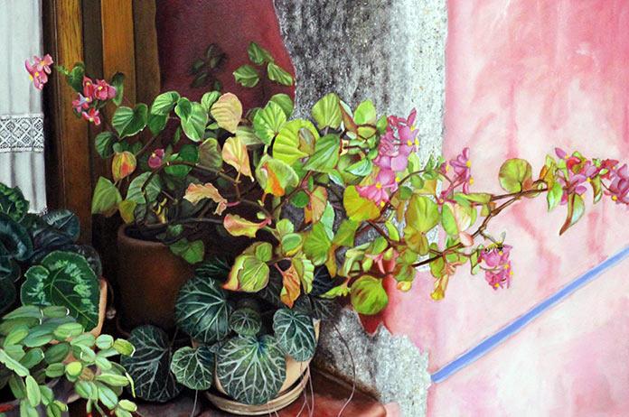 Las paredes de El Gran Café, Arte en las ventanas. Cora Ibáñez.