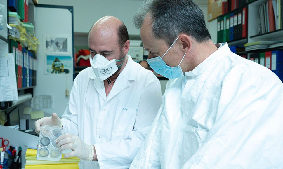 Investigadores del CNB ensayarán con animales la vacuna del COVID-19