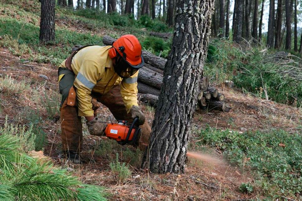 El lunes comienza la época de peligro alto de incendios