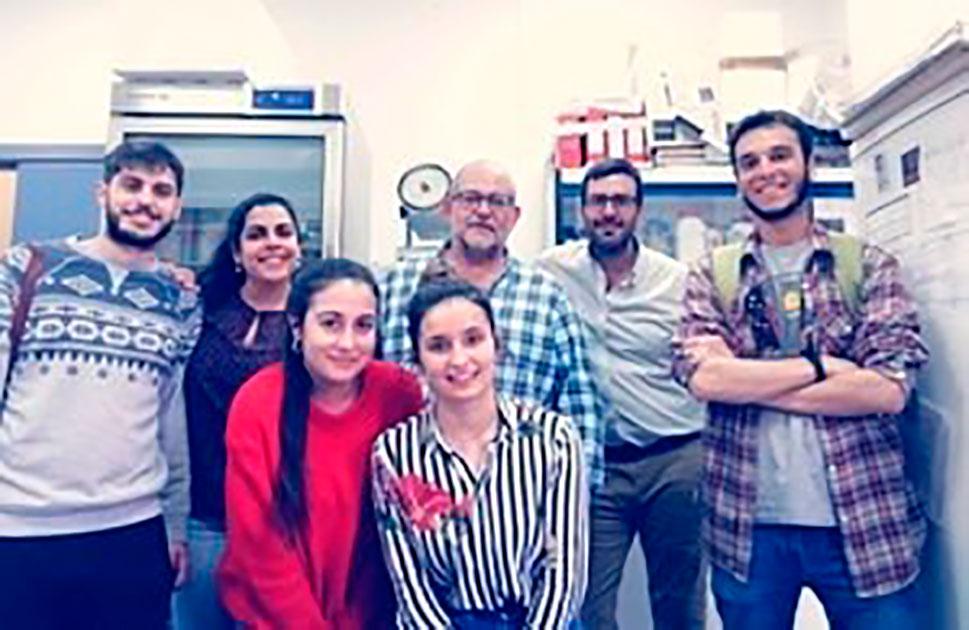 El Fondo COVID aprueba un proyecto de investigación de la Universidad de Extremadura