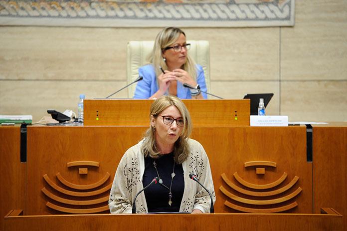 No habrá comisión de investigación sobre las residencias en la Asamblea