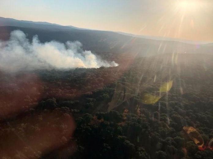 El INFOEX actuó en 19 incendios durante semana pasada