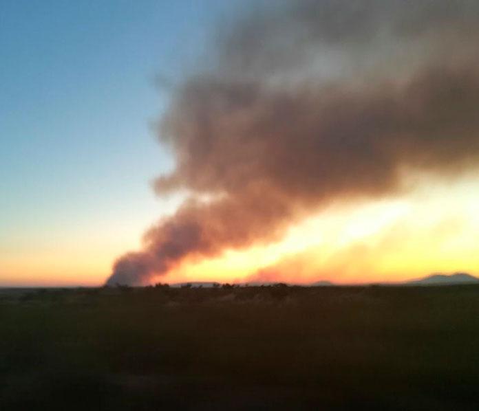 Cincuenta y dos incendios en Extremadura durante la pasada semana