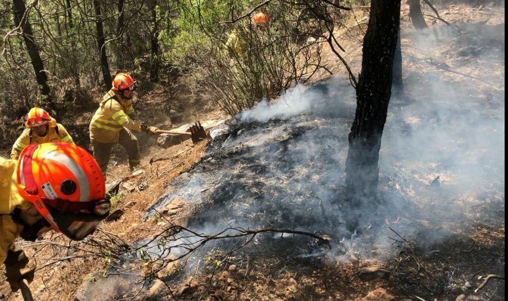 El Infoex extingue 12 incendios forestales