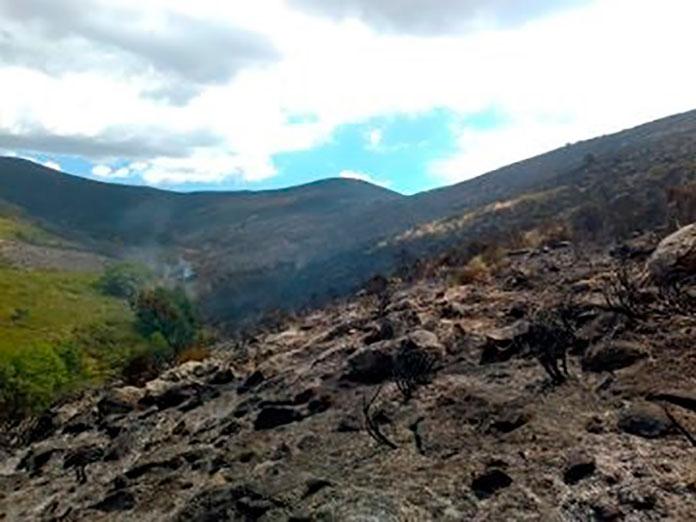 El incendio del Valle del Jerte y La Vera mantiene el nivel 1 de peligrosidad