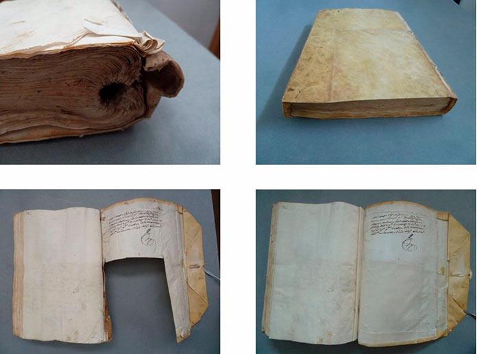 Como el ave Fénix muestra el trabajo de los restauradores de libros en Pintores 10