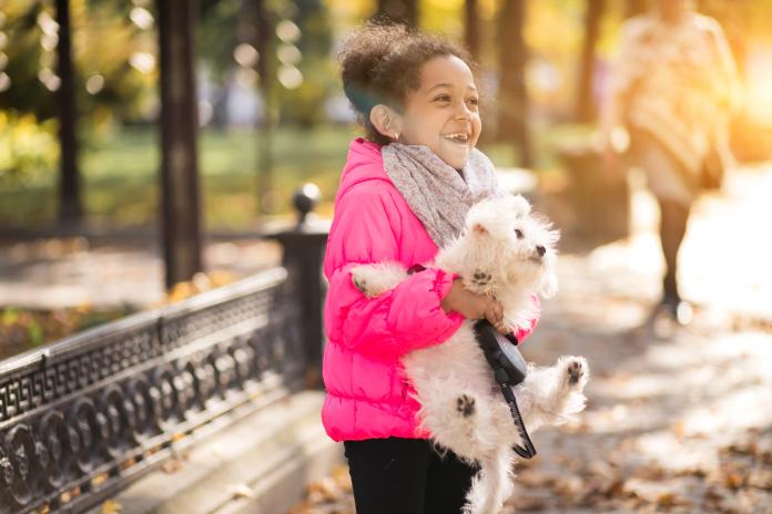 La comisión de la infancia de Cáceres realizará un vídeo sobre la protección de los animales