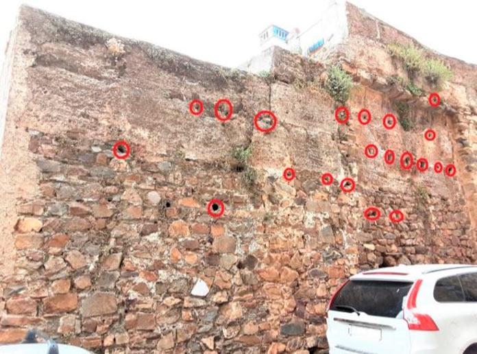 El Festivalino de las Aves de Cáceres identifica más de 100 nidos de vencejos en el adarve de la muralla - FESTIVALINO DE LAS AVES