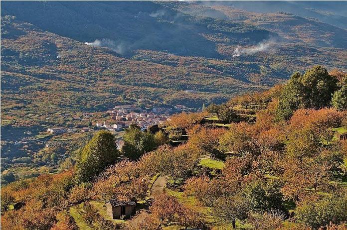 La Vera y el Valle del Jerte