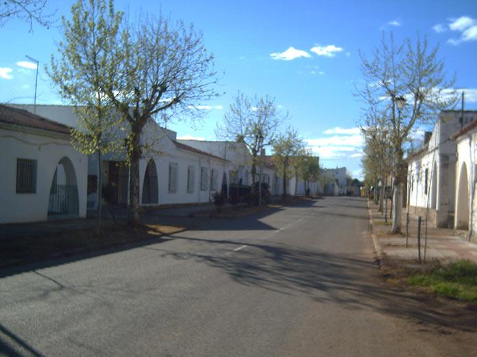 El SES realiza un cribado masivo en Rincón de Ballesteros