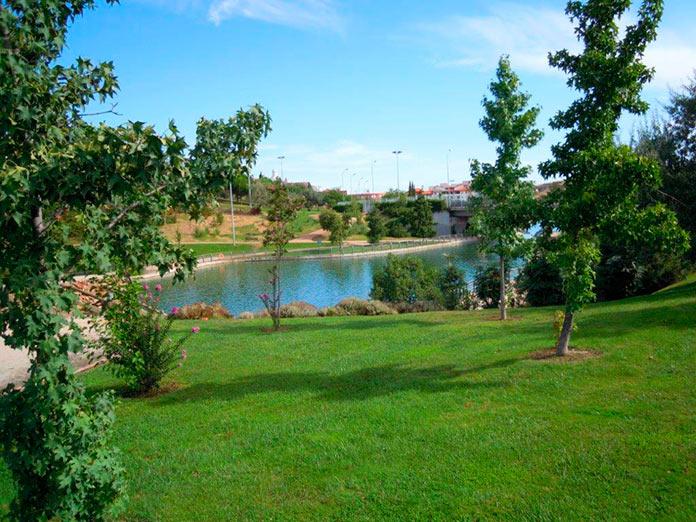 El Parque del Rodeo estrena un área de calistenia