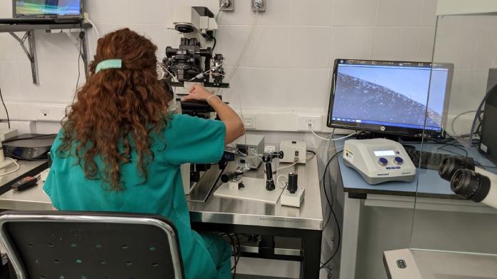 El Centro de Cirugía de Mínima Invasión investigará sobre el cáncer de colon